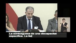 Compareixences del Tercer Sector en el tràmit de la Llei d'Accessibilitat del Parlament de Catalunya