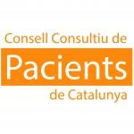 Subtítols en el III Consell Consultiu de Pacients